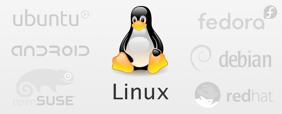 Wir bieten zertifizierten Support für Linux, egal ob openSUSE, fedora, Red Hat, Debian, Ubuntu oder Android